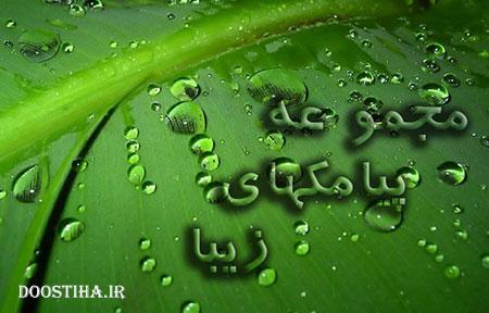 اس ام اس لری با ترجمه فارسی