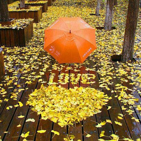 پیامک احساسی, اس ام اس های جدید و عاشقانه 9 آبان 1395, پیامک عاشقانه, اس ام اس رمانتیک, پیامک رمانتیک, جملات زیبا, متون عشق و عاشقی, دل نوشته احساسی, Love SMS, پیامکهای زیبا
