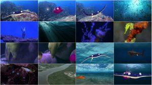 دانلود انیمیشن داستان ماهی Fishtales 2016