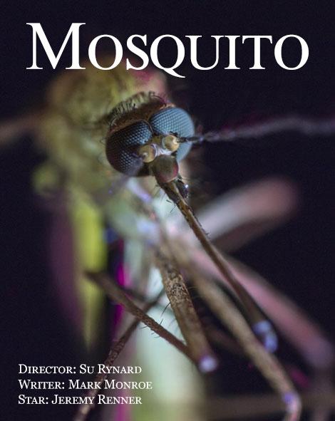 مستند پشه Mosquito 2017
