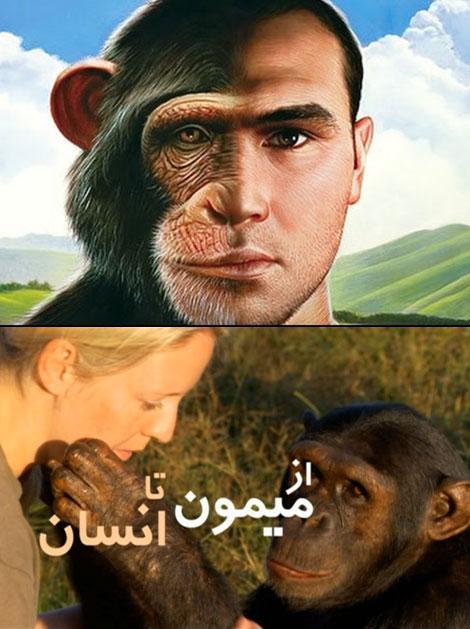 دانلود رایگان مستند از میمون تا انسان با دوبله فارسی
