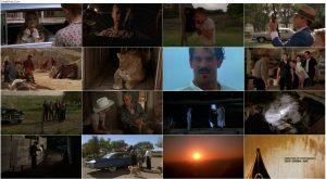 دانلود دوبله فارسی فیلم شیرهای پوشالی Secondhand Lions 2003