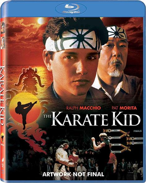 دانلود دوبله فارسی فیلم پسر کاراته The Karate Kid 1984, فیلم پسر کاراته 1 دوبله فارسی, دانلود فیلم The Karate Kid 1984 دوبله فارسی, پسر کاراته قسمت اول