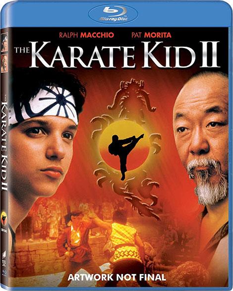 دانلود دوبله فارسی فیلم پسر کاراته The Karate Kid II 1986 1080p, فیلم The Karate Kid II 1986 720p دوبله فارسی, قسمت دوم فیلم پسر کاراته با دوبله فارسی