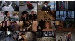 دانلود فیلم 102 سگ خالدار 102 Dalmatians 2000