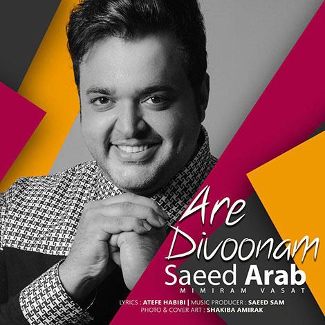دانلود آهنگ جدید سعید عرب به نام آره دیوونم, جدیدترین آهنگ سعید عرب Saeed Arab, دانلود رایگان آهنگ سعید عرب بنام آره دیوونم Are Divoonam, ترانه آره دیوونم