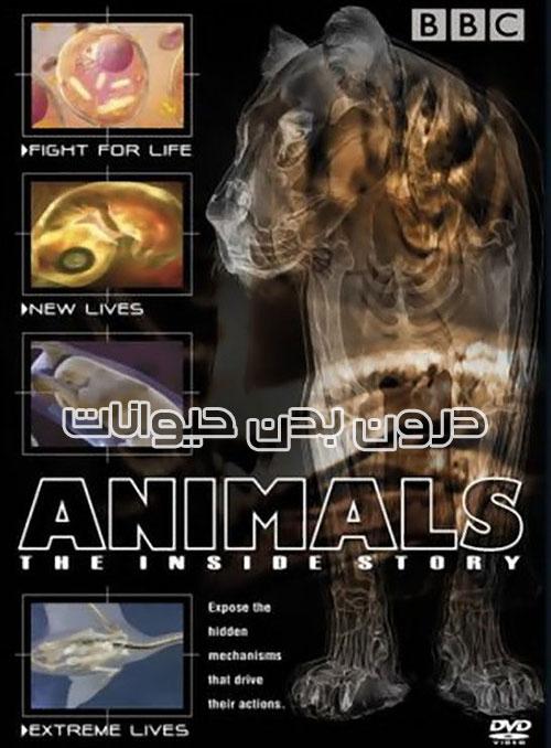 دانلود دوبله فارسی مستند درون بدن حیوانات Animals The Inside Story