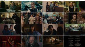 دانلود دوبله فارسی فیلم لیدی برد Lady Bird 2017