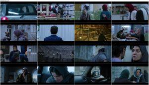 دانلود رایگان فیلم دارکوب, دانلود فیلم کامل دارکوب, تماشای آنلاین فیلم دارکوب