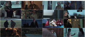 دانلود فیلم کارآگاه فاکس The Fox 2017 با دوبله فارسی