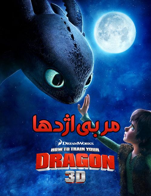 دانلود انیمیشن مربی اژدها با دوبله فارسی How to Train Your Dragon 2010