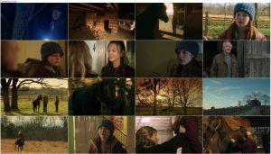 دانلود فیلم اسب یتیم Orphan Horse 2018 با دوبله فارسی