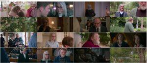 دانلود فیلم سینمایی همپستد Hampstead 2017 با دوبله فارسی