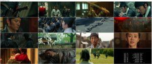 دانلود دوبله فارسی فیلم سه شمشیرزن Brotherhood of Blades 2014