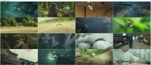 دانلود انیمیشن زندگی حشرات Minuscule 2: Mandibles From Far Away 2018