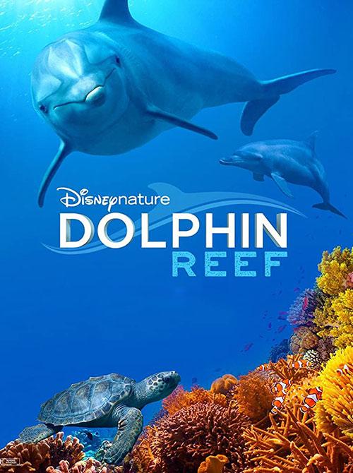 دانلود مستند صخره دلفین Dolphin Reef 2020
