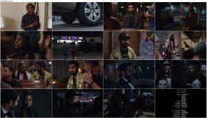 دانلود فیلم مرغ عشق ها با دوبله فارسی The Lovebirds 2020