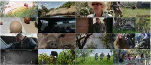 دانلود مستند بزرگترین مزرعه کوچک The Biggest Little Farm 2018