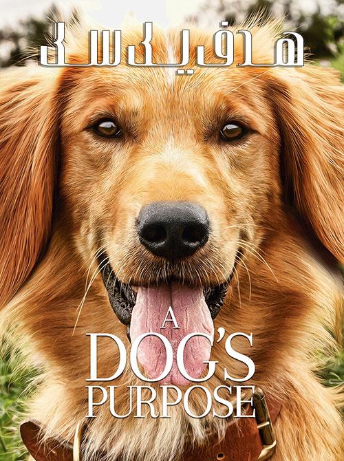 دانلود فیلم هدف یک سگ زیرنویس فارسی A Dog's Purpose 2017