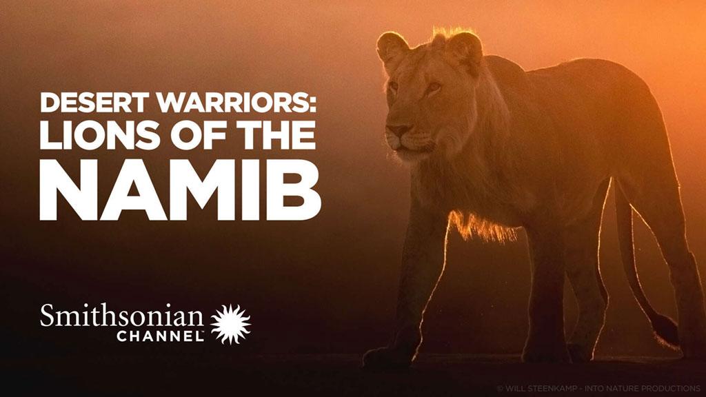 جنگجویان صحرا: شیرهای نامیب (مستند)