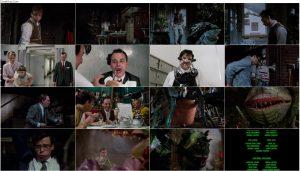 دانلود فیلم فروشگاه کوچک ترسناک Little Shop of Horrors 1986