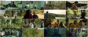 دانلود فیلم هندی شرنی Sherni 2021