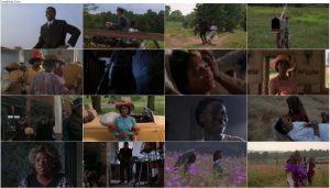 دانلود فیلم به رنگ ارغوان The Color Purple 1985