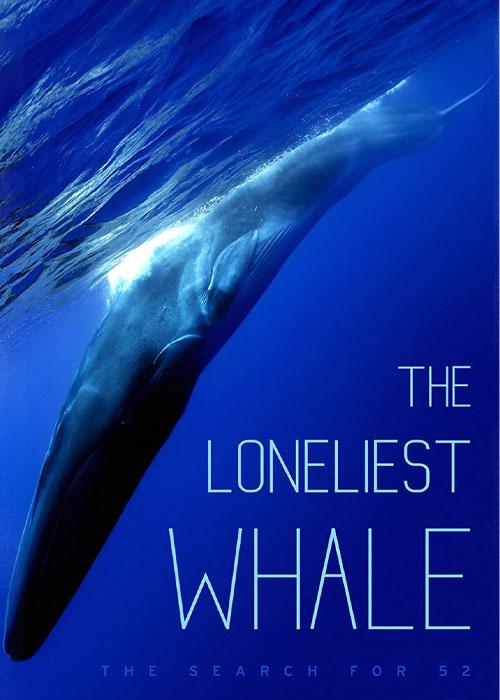 دانلود مستند تنهاترین نهنگ The Loneliest Whale 2021
