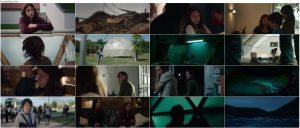 دانلود فیلم هجوم ملخ ها The Swarm 2020