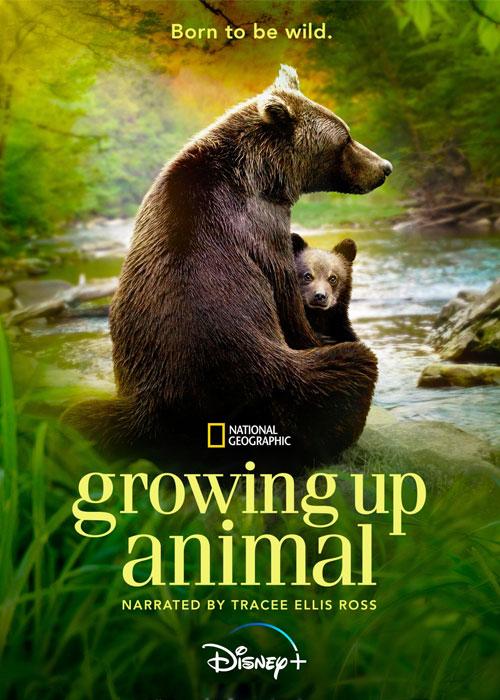 دانلود مستند رشد حیوانی Growing Up Animal 2021